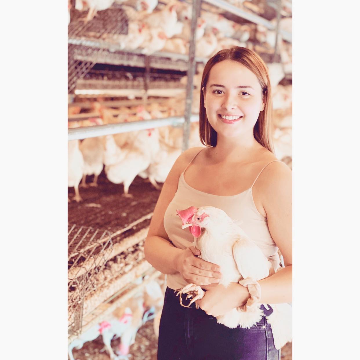 Clayewater Farms poultry farm