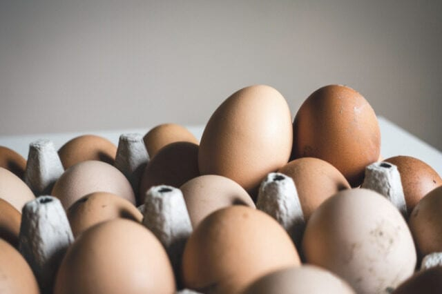 How different factors influence egg size